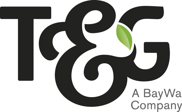 T&G Global logo